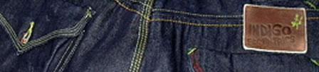 Indigo Eccentrics by Pepe Jeans Indigo jeans