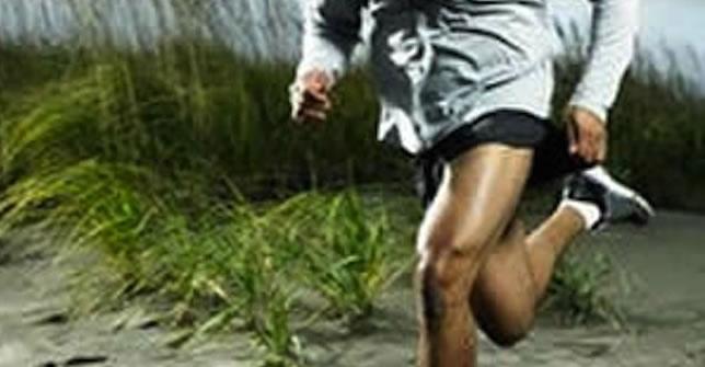 Nike NOHARM trainers